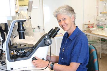 Professor Angela Wulff i labbet på Botan